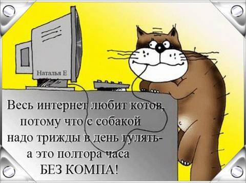 http://sg.uploads.ru/t/k2Q3g.jpg