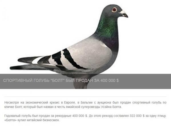 http://sg.uploads.ru/t/k7WVC.jpg