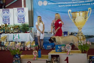 http://sg.uploads.ru/t/kIXjG.jpg
