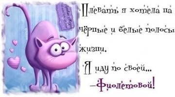 http://sg.uploads.ru/t/kLgpR.jpg