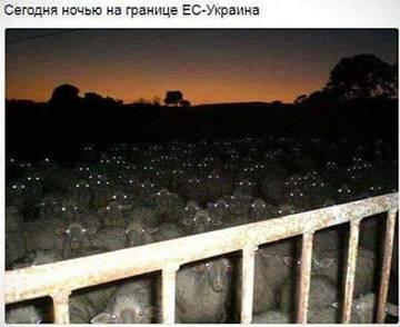 http://sg.uploads.ru/t/kdMU3.jpg