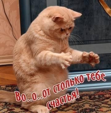 http://sg.uploads.ru/t/l1Rem.jpg