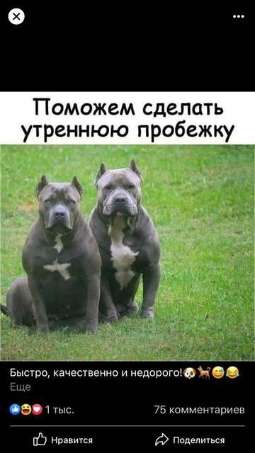http://sg.uploads.ru/t/lIDqi.jpg
