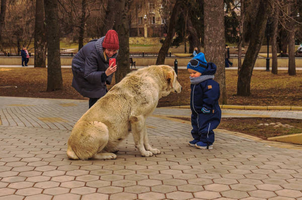 http://sg.uploads.ru/t/lQZGe.jpg
