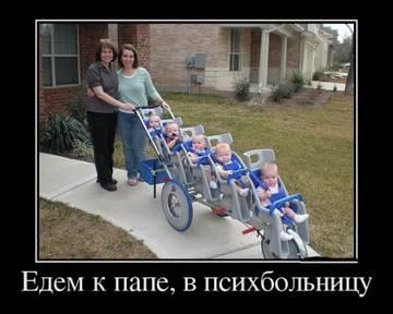 http://sg.uploads.ru/t/leR9x.jpg