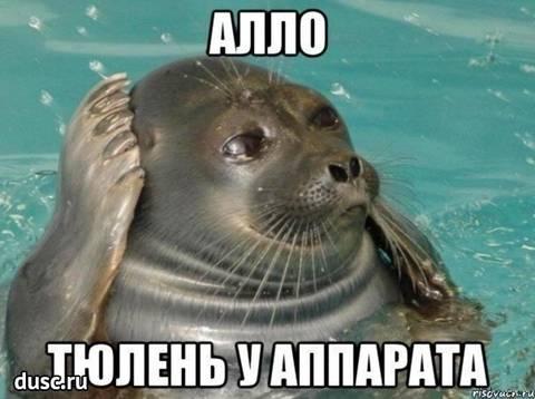 http://sg.uploads.ru/t/lj02U.jpg
