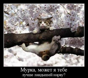 http://sg.uploads.ru/t/luPwY.jpg