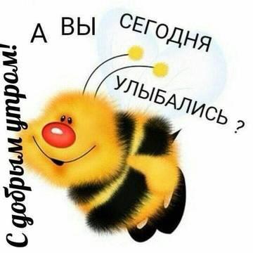 http://sg.uploads.ru/t/m3D4b.jpg