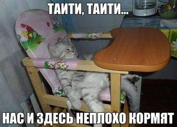 http://sg.uploads.ru/t/mVXCT.jpg
