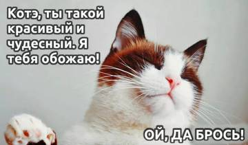 http://sg.uploads.ru/t/mWMVw.jpg