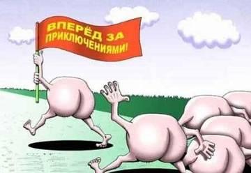 http://sg.uploads.ru/t/mX6qB.jpg