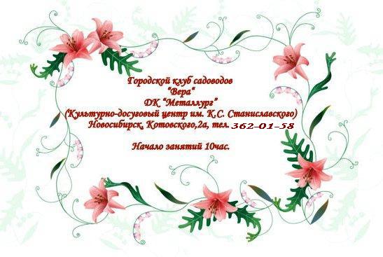 http://sg.uploads.ru/t/mjZbM.jpg