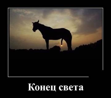 http://sg.uploads.ru/t/muF3M.jpg