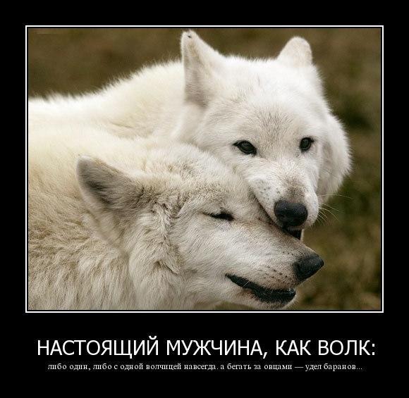 http://sg.uploads.ru/t/nMQKo.jpg