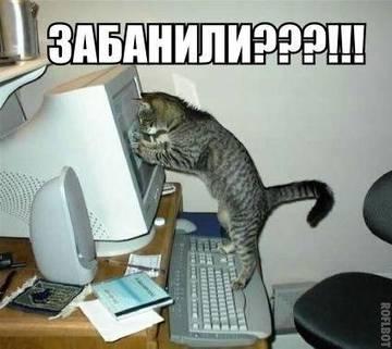 http://sg.uploads.ru/t/oEUAf.jpg