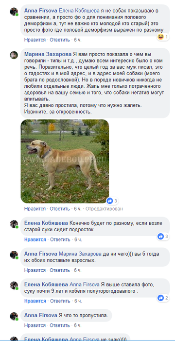 http://sg.uploads.ru/t/obiq3.png