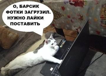 http://sg.uploads.ru/t/p00W8.jpg