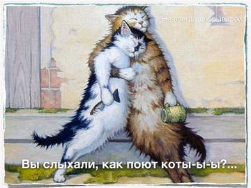 http://sg.uploads.ru/t/pUCYi.jpg