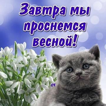 http://sg.uploads.ru/t/pgrmD.jpg