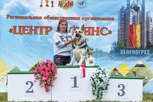 МОНО ВЕО КЧК+ 3 САС 10-11 июня г.Зеленоград Porc5