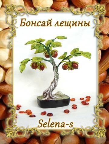 http://sg.uploads.ru/t/ptrkD.jpg