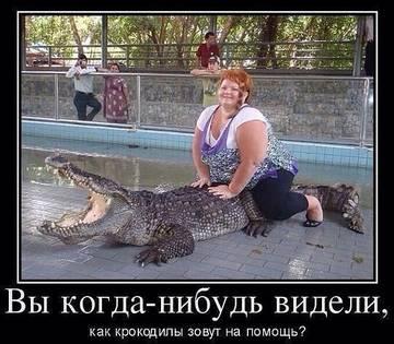 http://sg.uploads.ru/t/pyGNa.jpg