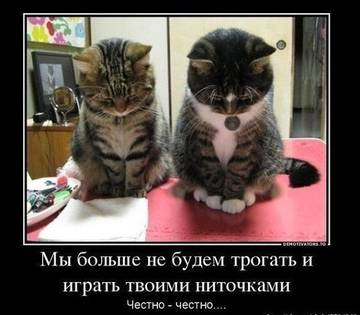 http://sg.uploads.ru/t/pzQV5.jpg