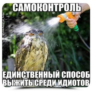 http://sg.uploads.ru/t/qaxcu.jpg