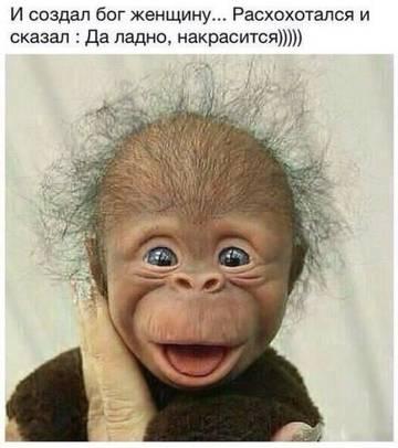 http://sg.uploads.ru/t/qkldA.jpg