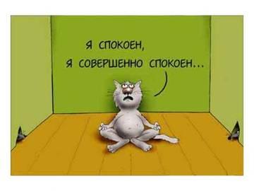 http://sg.uploads.ru/t/qst71.jpg