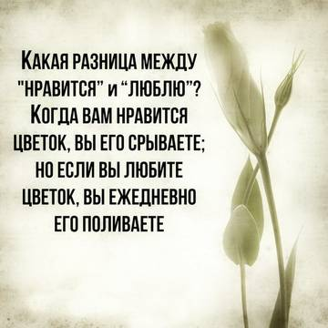 http://sg.uploads.ru/t/qucHh.jpg