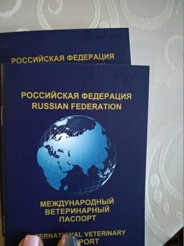 http://sg.uploads.ru/t/r5i9K.jpg