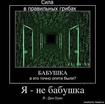 http://sg.uploads.ru/t/r70KB.jpg