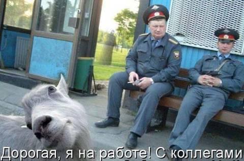 http://sg.uploads.ru/t/rMxhn.jpg