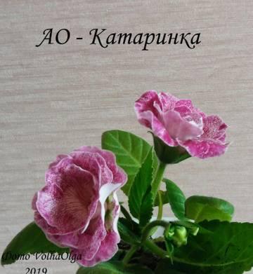 http://sg.uploads.ru/t/rN8Av.jpg