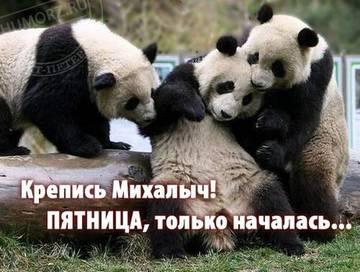 http://sg.uploads.ru/t/sVWOT.jpg