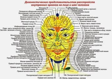 http://sg.uploads.ru/t/scfPG.jpg