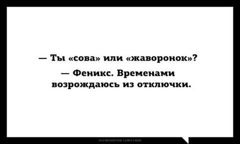 http://sg.uploads.ru/t/snrcM.jpg