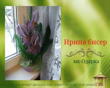 http://sg.uploads.ru/t/srIb1.jpg