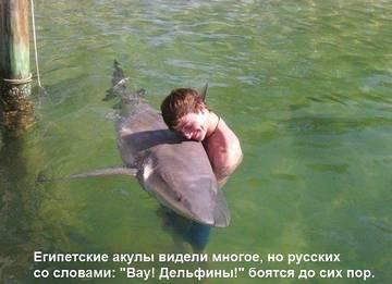 http://sg.uploads.ru/t/t3kvY.jpg
