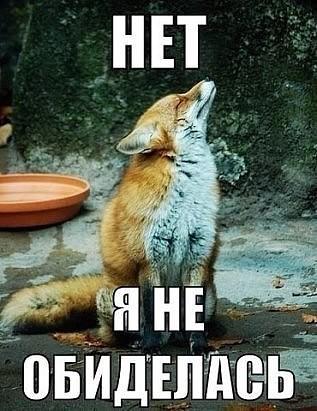 http://sg.uploads.ru/t/tKWce.jpg
