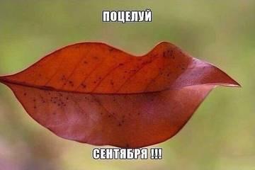 http://sg.uploads.ru/t/tyc6D.jpg