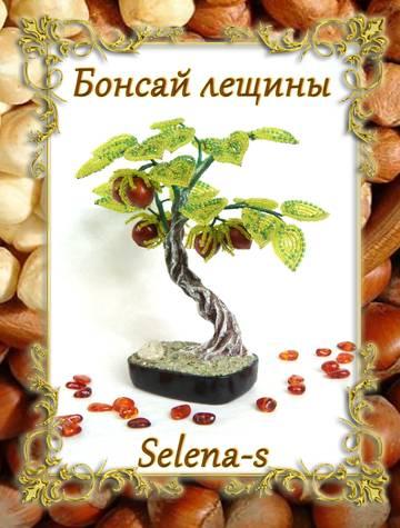 http://sg.uploads.ru/t/u85sX.jpg