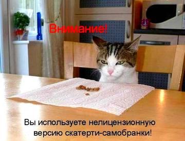 http://sg.uploads.ru/t/uUPFh.jpg