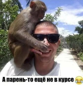 http://sg.uploads.ru/t/ucdCR.jpg