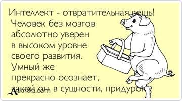 http://sg.uploads.ru/t/uesUY.jpg