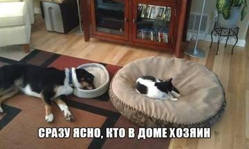 http://sg.uploads.ru/t/ufi8D.jpg