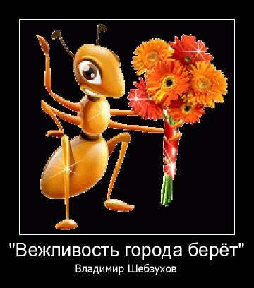 http://sg.uploads.ru/t/vGoOq.jpg