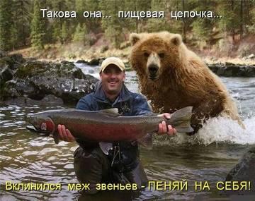 http://sg.uploads.ru/t/vUIYF.jpg