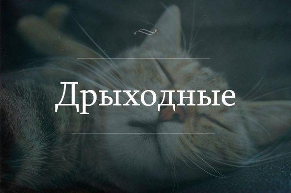 http://sg.uploads.ru/t/w987B.jpg